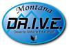DRIVE_Sm